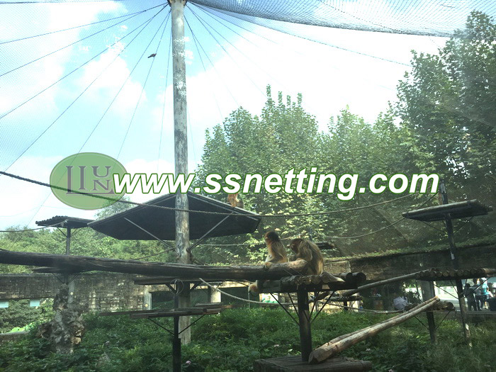 Golden Monkey Museum fence is tainless steel wire rope mesh products