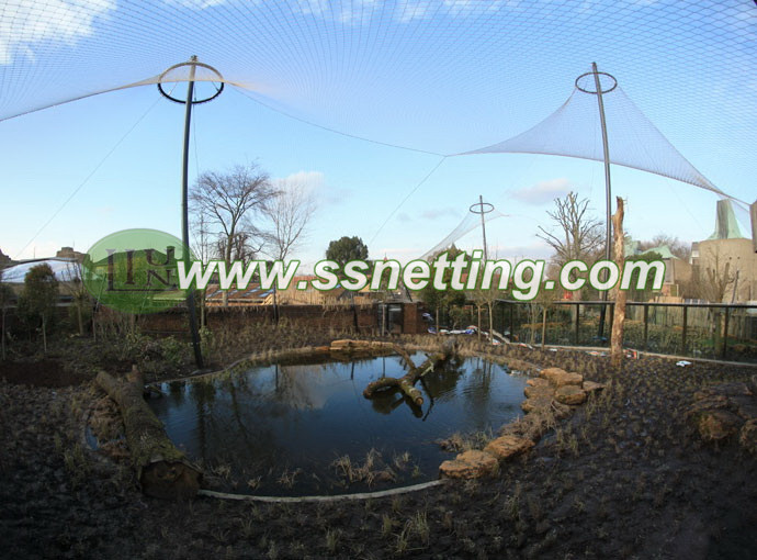 Good Bird aviary netting design and selection