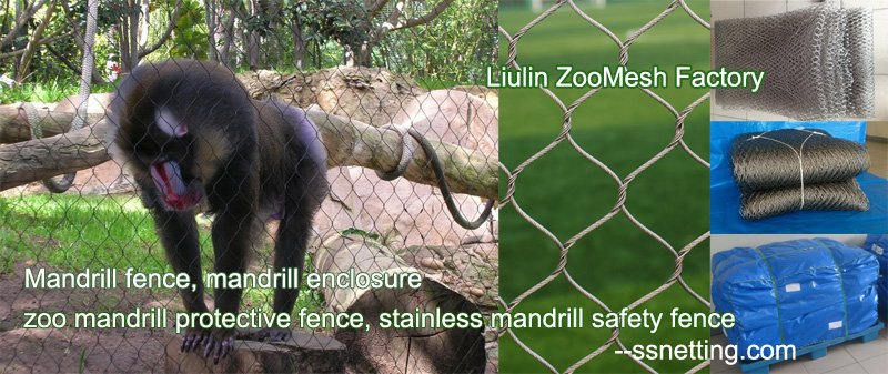 Mandrill fence, mandrill enclosure, zoo mandrill protective fence, stainless mandrill safety fence.jpg