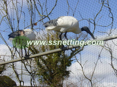 Outdoor stainless steel zoo Crane cage netting manufacture & supplier in China