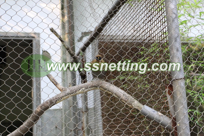 wire rope bird aviary screen netting, wire cable bird cage fence, knotted mesh for bird netting, X-acrossed mesh of birds net, X-tend wire rope mesh