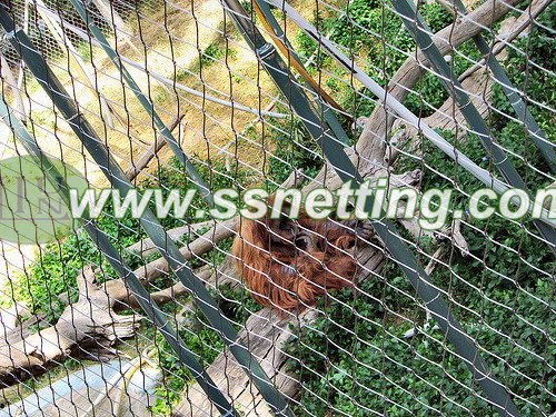 liulin manufactures supplies for gibbon cage fence netting, gibbon enclosures protection