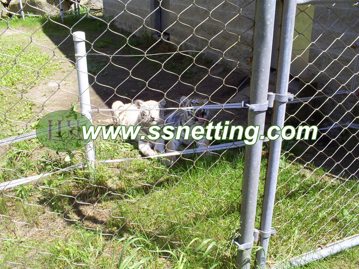 Stainless steel wire rope mesh for zoo exhibit netting