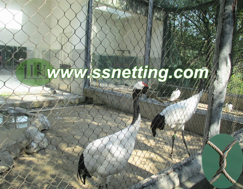 Sales of stainless steel egret protective net, egret cage fence mesh, egret fence netting custom