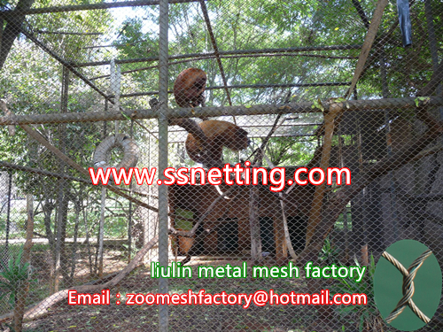 Monkey Hall venues metal fence mesh, steel wire rope monkey enclosure fence, Golden monkeys metal cage net
