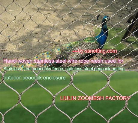Stainless steel peacocks fence, stainless steel peacock netting, outdoor peacock enclosure.jpg