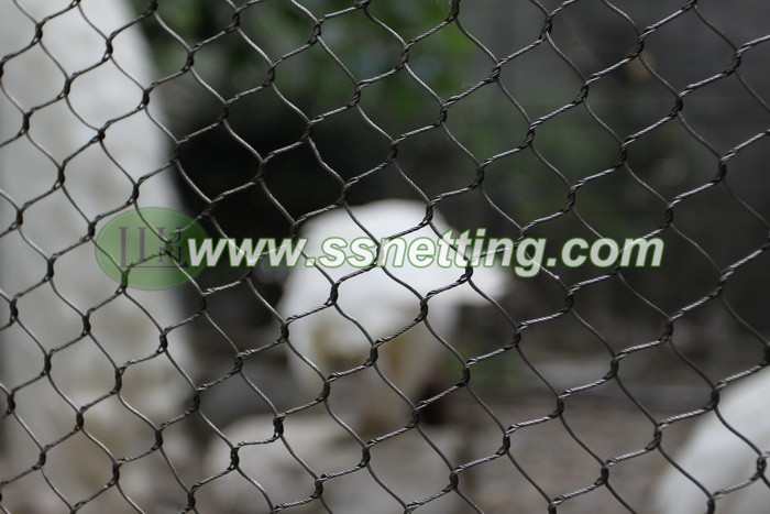 Black oxide stainless steel cable woven mesh can be used for bird cage fence, bird netting, bird aviary netting, bird cage screen netting, bird cage protective fence, birds safe nets, and so on.