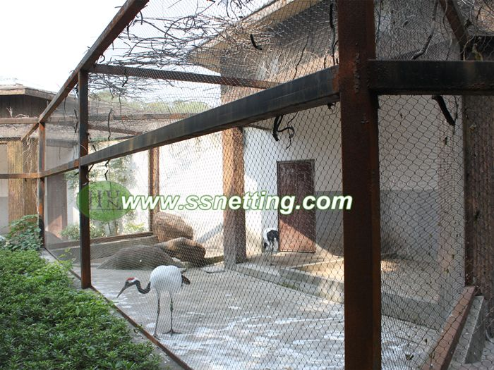 Upgrade for your aviary, choose the woven stainless steel aviary mesh