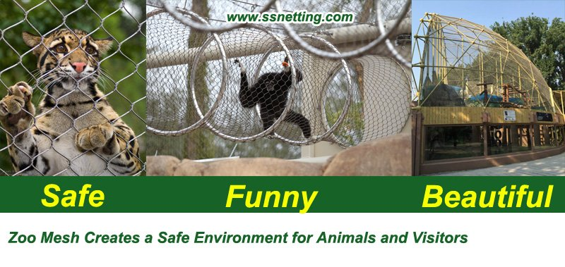 Zoo Mesh Creates a Safe Environment for Animals and Visitors