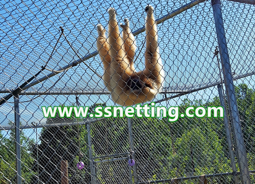 stainless steel rope mesh for zoo orangutans cage enclosure