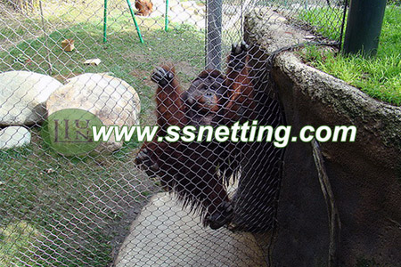 Animal Fence Enclosures Netting in Zoo Visiting Information