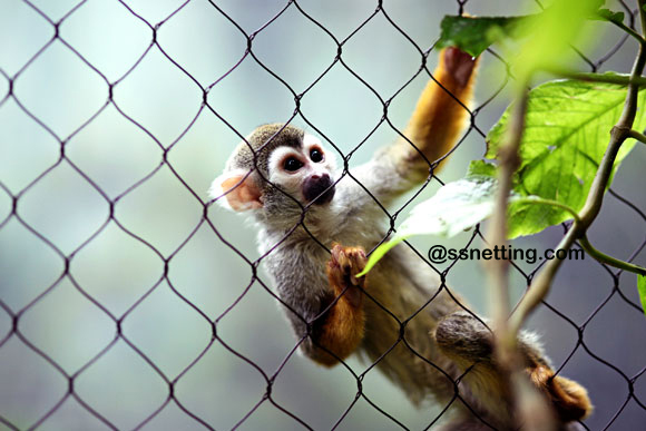Animal fence enclosure netting design tips