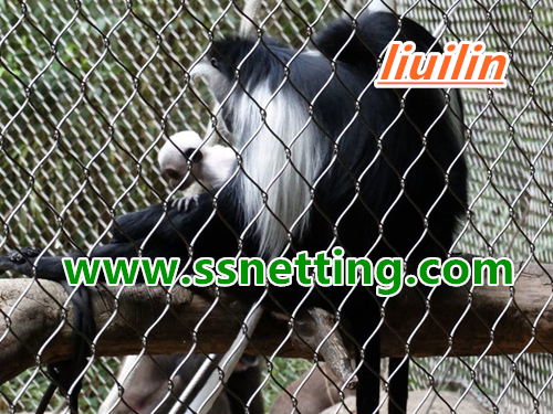 stainless steel monkey enclosure mesh, fence netting.jpg