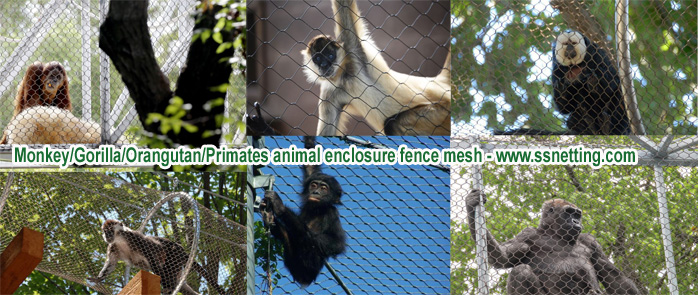 Monkey/Gorilla/Orangutan/Primates animal enclosure fence mesh