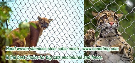 Hand woven stainless steel cable mesh is the best choice for big cats enclosures and fence..jpg