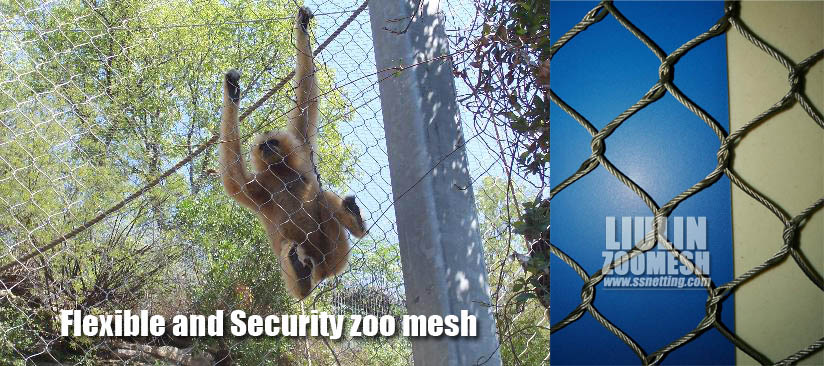 Flexible and Security zoo mesh