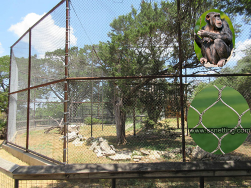 Wide range of Zoo Enclosure Fencing for sale