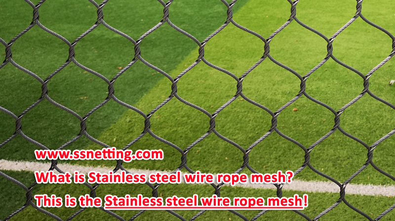 What is the Stainless steel wire rope mesh