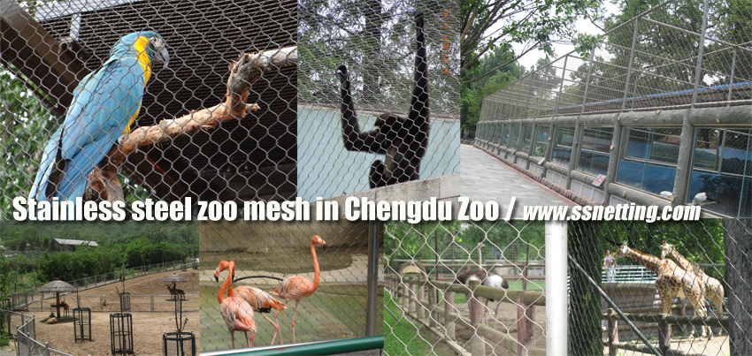 Stainless steel zoo mesh in Chengdu Zoo