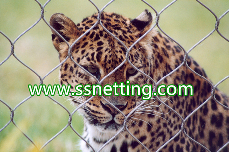 Stainless steel animal enclosure mesh.jpg