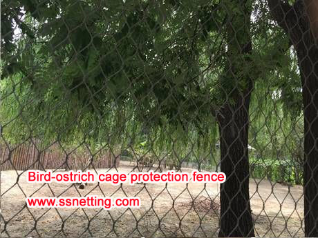 Bird-ostrich cage protection fence
