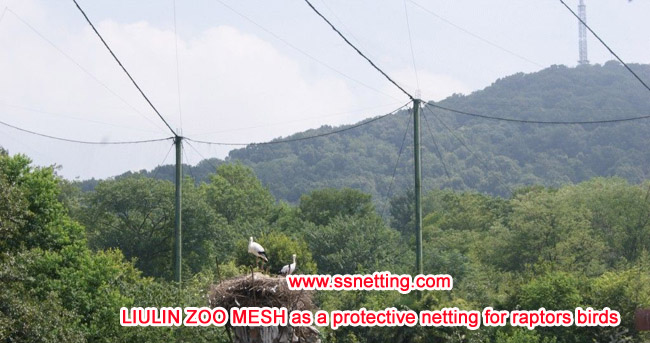 LIULIN ZOO MESH as a protective netting for raptors birds