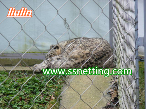 leopard enclosure mesh manufacturer in china