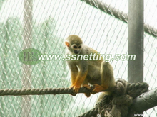 Monkey Enclosure Mesh