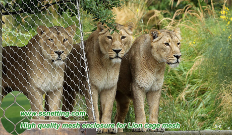 High quality mesh enclosure for Lion cage mesh.jpg