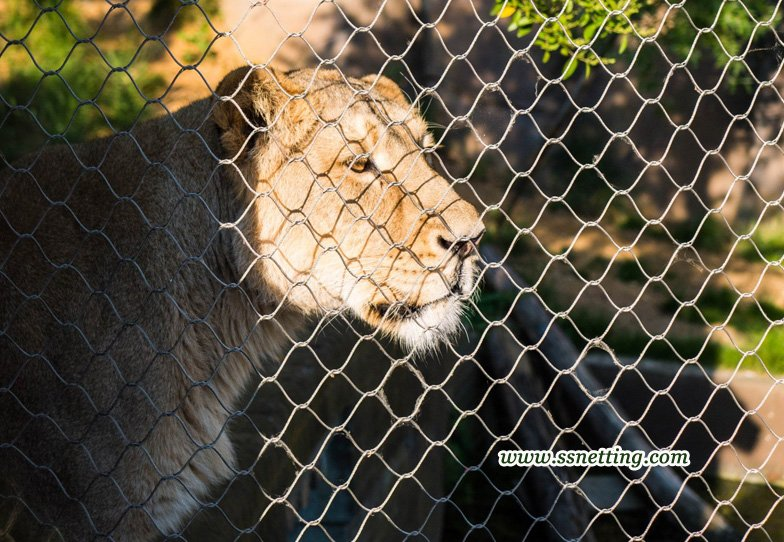 Stainless steel cable mesh for lion enclosure fence mesh.