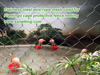 Flamingo Cage Netting Client Case